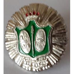 Pin Policia 1920