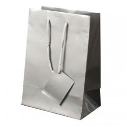Bolsa regalo Papel con etiqueta 23x16