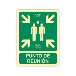 Pictograma archivo 2000 punto de reunion pvc verde...